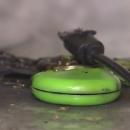 fidget-spinners-estan-comenzando1-explotar-frikigamers.com