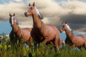 rockstar-habla-de-la-programacion-de-los-caballos-en-red-dead-redemption-2-frikigamers.com