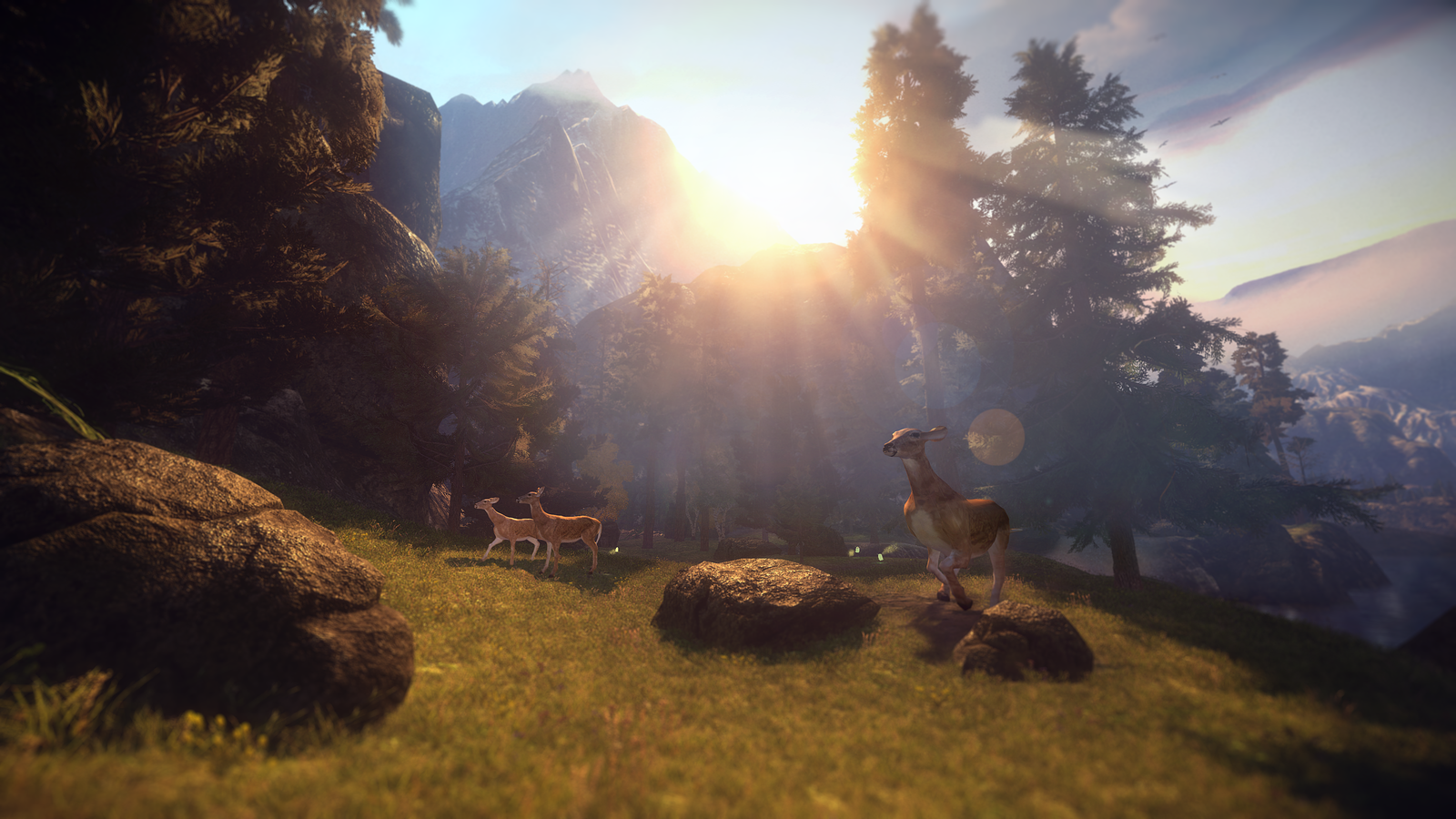 valley-available-now-on-switch-frikigamers.com.jpg